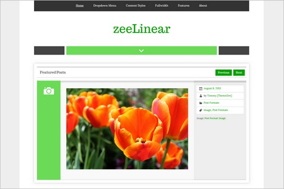 zeeLinear One-Column Free WordPress Theme