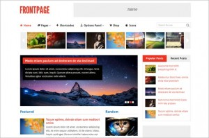 Frontpage Woocommerce-ready WordPress Theme