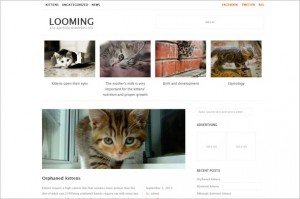 Exciting Free WordPress Themes - Looming