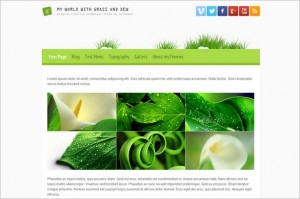 My World with Grass and Dew Free WordPress Theme