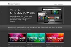 Opulus Sombre Free WordPress Theme