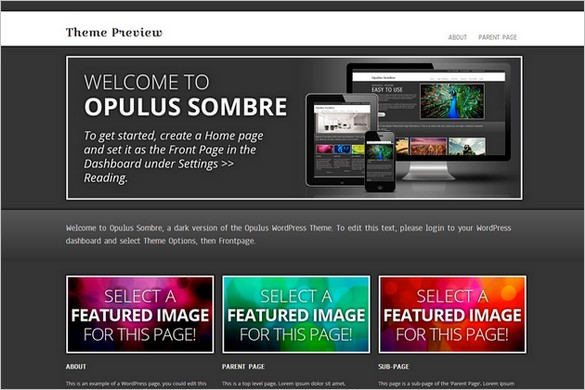 Exceptional and Free WordPress Themes - Opulus Sombre