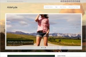 Dazzling Free WordPress Themes - Aldehyde
