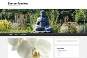 Brand New WordPress Themes - Catch Evolution