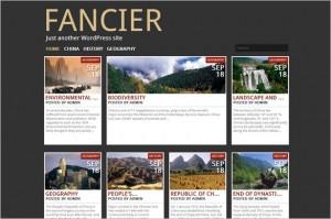 Brand New WordPress Themes - Fancier
