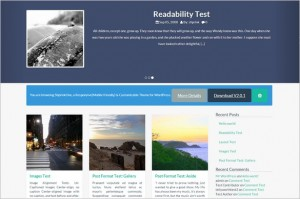 Pinterest Inspired Themes for WordPress - ShprinkOne