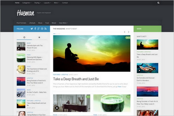 Hueman - A Free High Resolution Magazine WordPress Theme