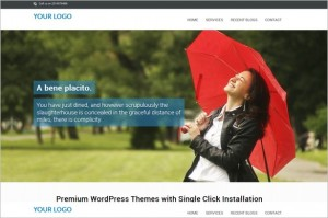 One Page Free WordPress Theme from InkThemes