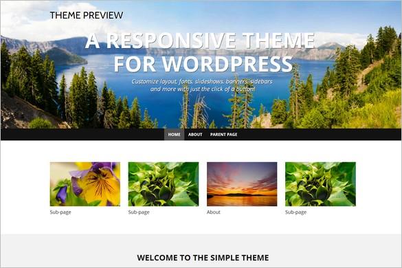 High Quality Free WordPress Themes - WP Simple