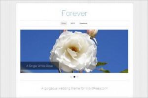 Absolute Best Free WordPress Themes