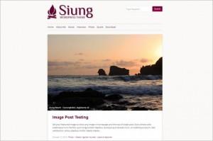 Siung Free WordPress Theme