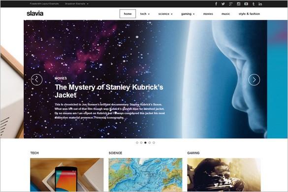 Magazine WordPress Themes - Slavia