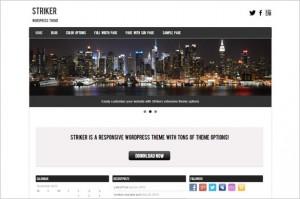 Striker Free WordPress Theme