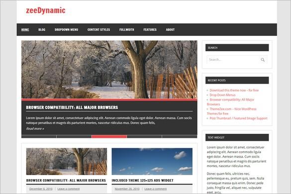 Best Magazine WordPress Themes - zeeDynamic