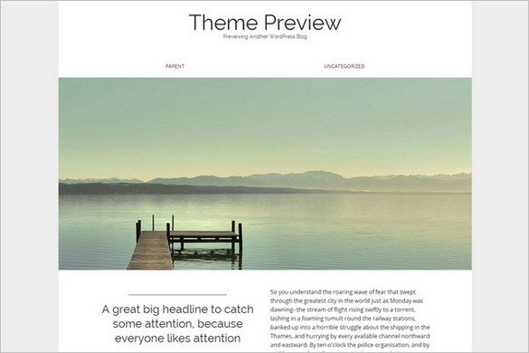 WordPress Themes with Elegant Minimalist Design