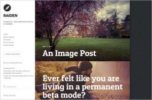 WordPress Themes with Elegant Minimalist Design
