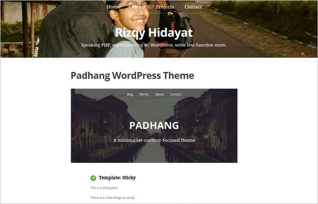 Free Content Focused WordPress Themes