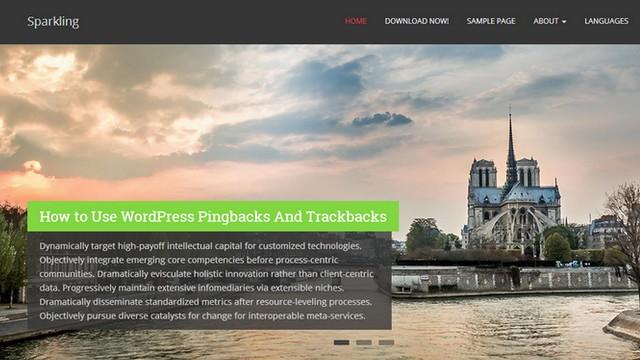 Sparkling - A Free Modern WordPress Theme from colorlib