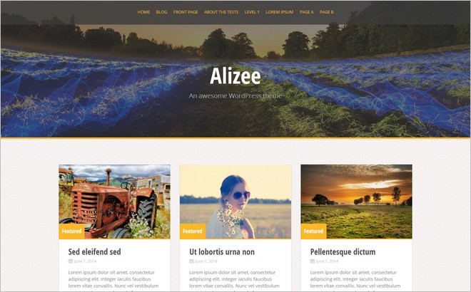 Top 10 New Free WordPress Themes June 2014 Edition