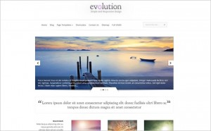 Spectacular Photography WordPress Themes That'll keep your visitors engaged