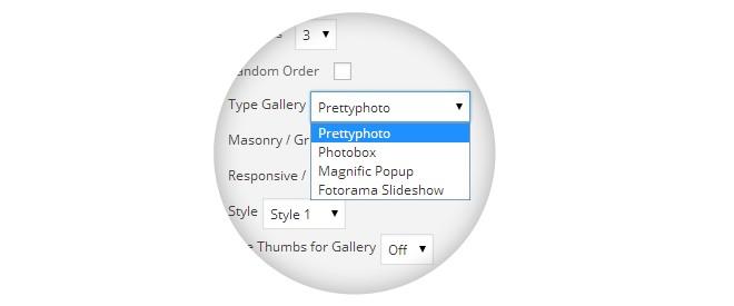 Build Beautiful Galleries with Fast Gallery WordPress Plugin