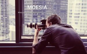 Moesia - A Striking Free Business WordPress Theme