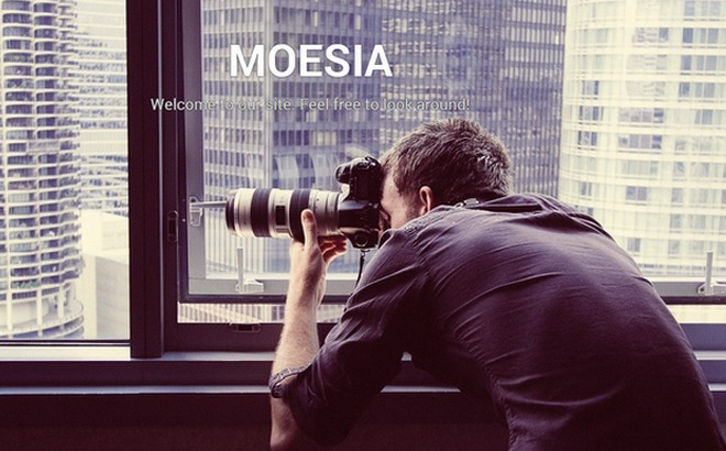 Moesia - A Striking Free Business WordPress Theme