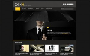 Top 8 WordPress Themes Custom-built for Security Company Websites