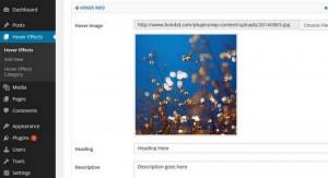 Amazing Hover Effects - Free WordPress Plugin