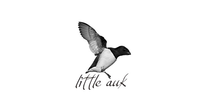 Little Auk - A Free Minimalist WordPress Theme