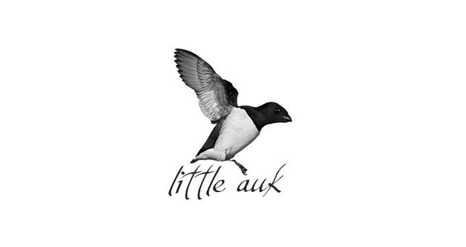 Little Auk - A Free Minimalist WordPress Theme