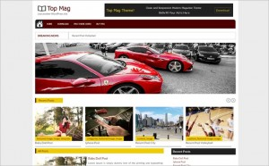 Tremendous WordPress Themes November 2014 With Extensive Features