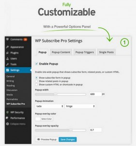 Turn Visitors Into Paying Customers With WP Subscribe Pro WordPress Plugin