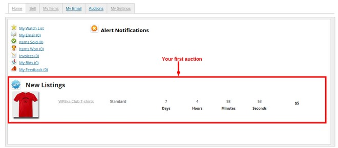 How to Set up an Auction Site like eBay