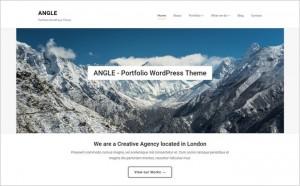 Angle - A WordPress Portfolio Theme with Minimal Beautiful Design by WPZOOM