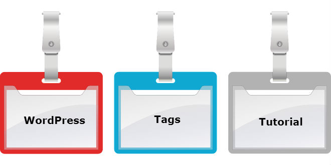 Learn Ways to Utilize Tag Fields in WordPress