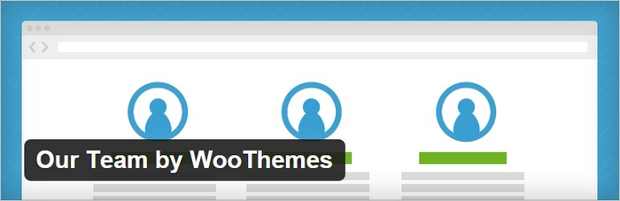 meet the team page wordpress widgets