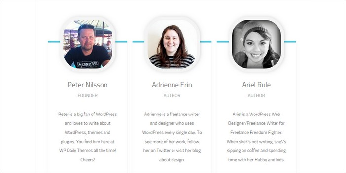 meet the team wordpress theme