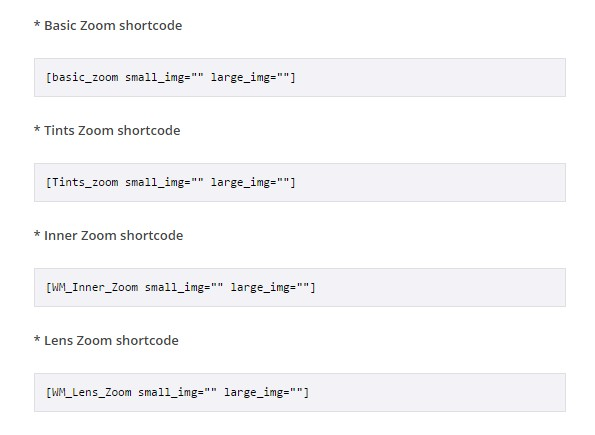 How to Add Eye-Catching Zoom Effects in WordPress