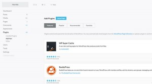 Everything You Need to Know About WordPress Admin Themes