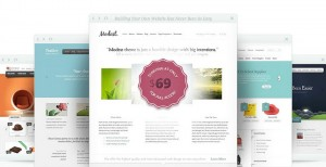 How Elegant Themes Just Skyrocketed Their Value as a WordPress Theme Shop