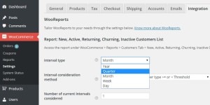 WooReports WordPress Plugin Review: An Analytical Extension