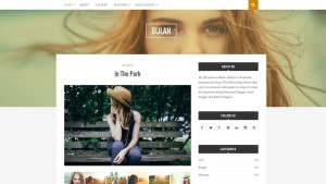 Top 10 New Free WordPress Themes October 2015 Edition