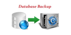 How to Manage Your WordPress Database Effortlessly