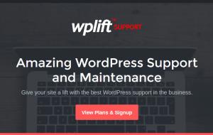 WordPress Maintenance Service - WPLift Support