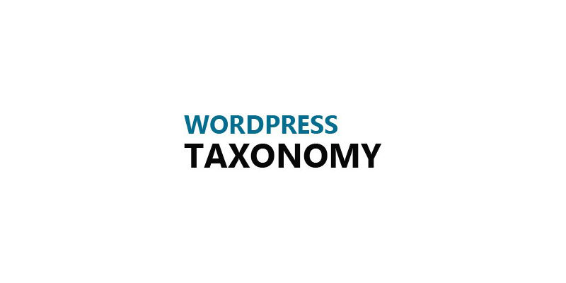 Custom Taxonomies to Improve Your WordPress Site's UX
