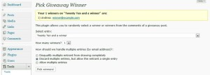 Hosting a Giveaway Using Your WordPress Website