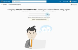How to Make Your WordPress Website Better With Usersnap