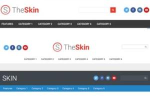 Skin - A Free WordPress Theme for the Community