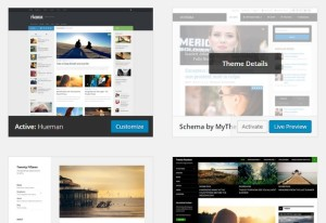 Built-In WordPress Options You Must Know
